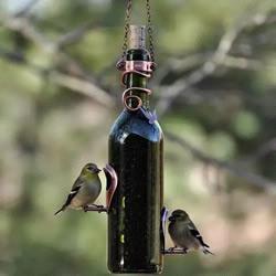 glass bottle recycling idea-bird feed